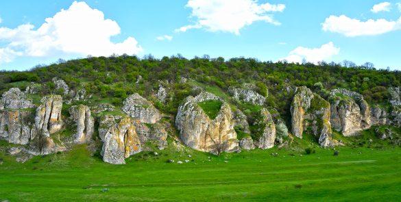 Dobrudja landscape
