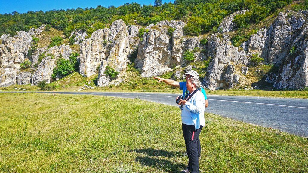 birdwatching in dobrudja