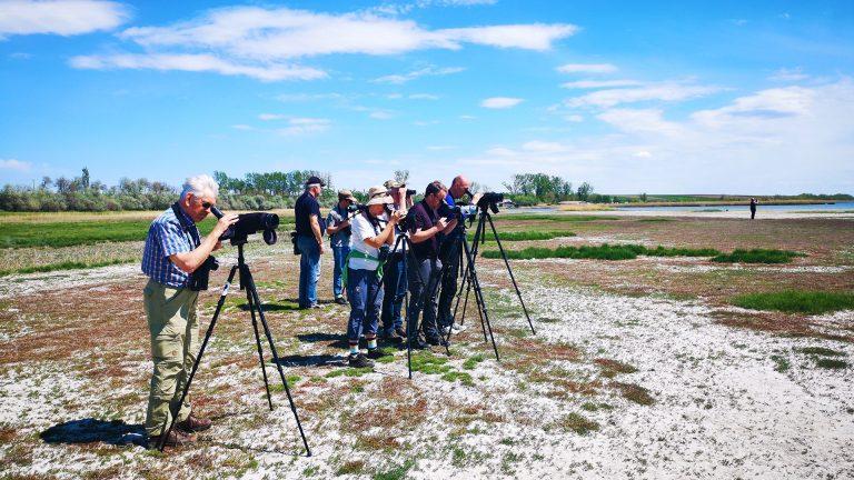 danube delta birdwatching group