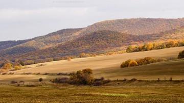 Dobrudja in autumn