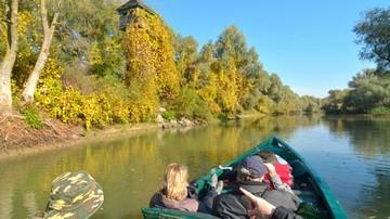 Danube Delta in Autumn